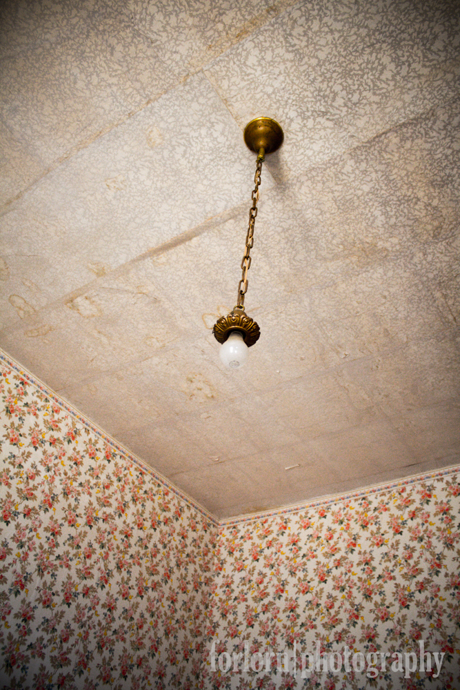 Bare Bulb & Wallpaper