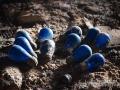 Blue Bulbs
