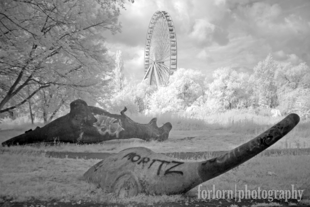Camera: Canon Rebel XT converted to infrared
